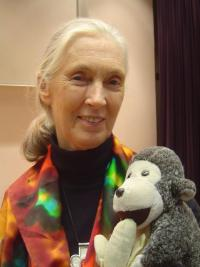 Jane Goodall coming to the VUB